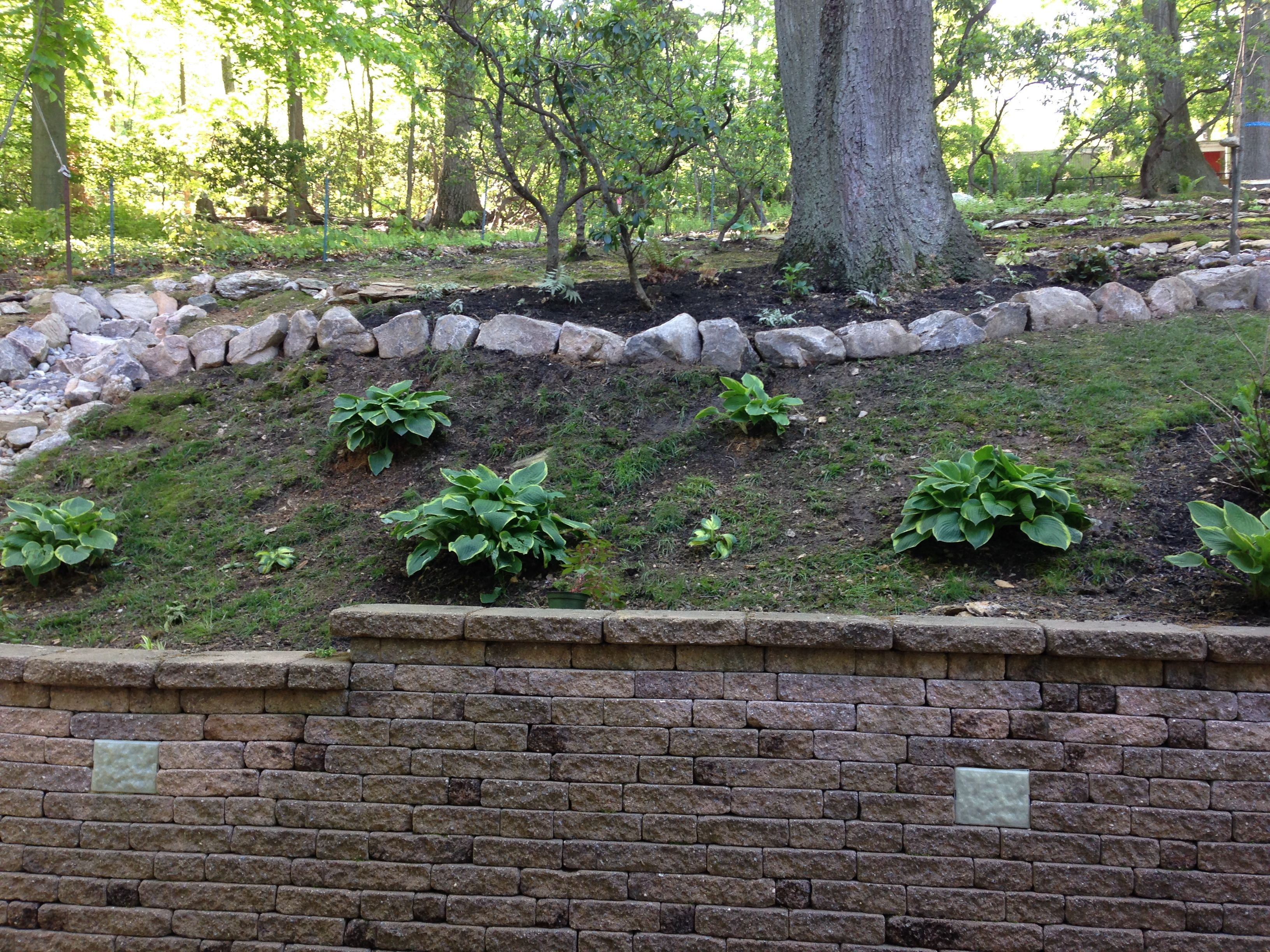 Backyard Hill Erosion : Pin by JD McCue on JDs The Repurposed Gardener  Pinterest