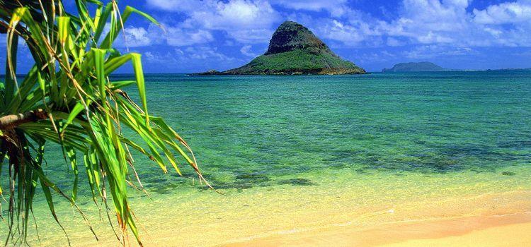 Visita la playa en Oahu Hawaii