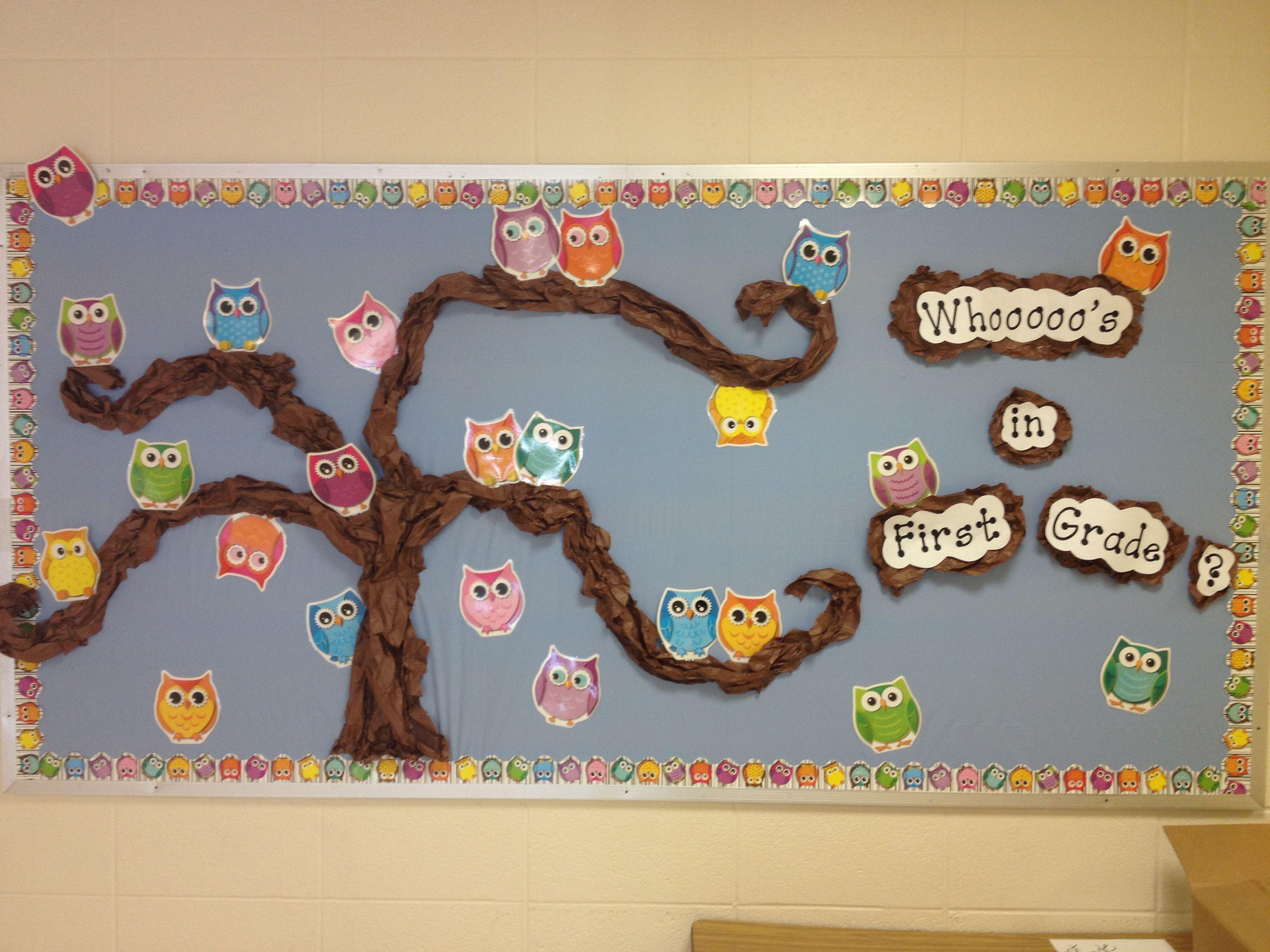 Classroom Bulletin Board Ideas With Owls ~ Owl bulletin board classroom pinterest