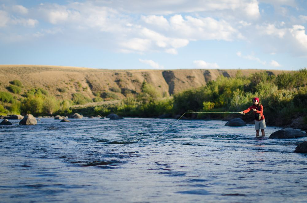 Working The Seam Green River Wy Fly Fishing Pinterest