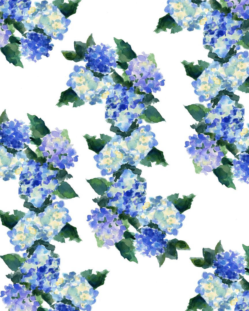 hydrangea wallpaper my favourites illlustrations
