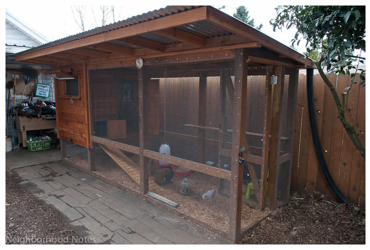 chook pen designs cute coop shed pinterest