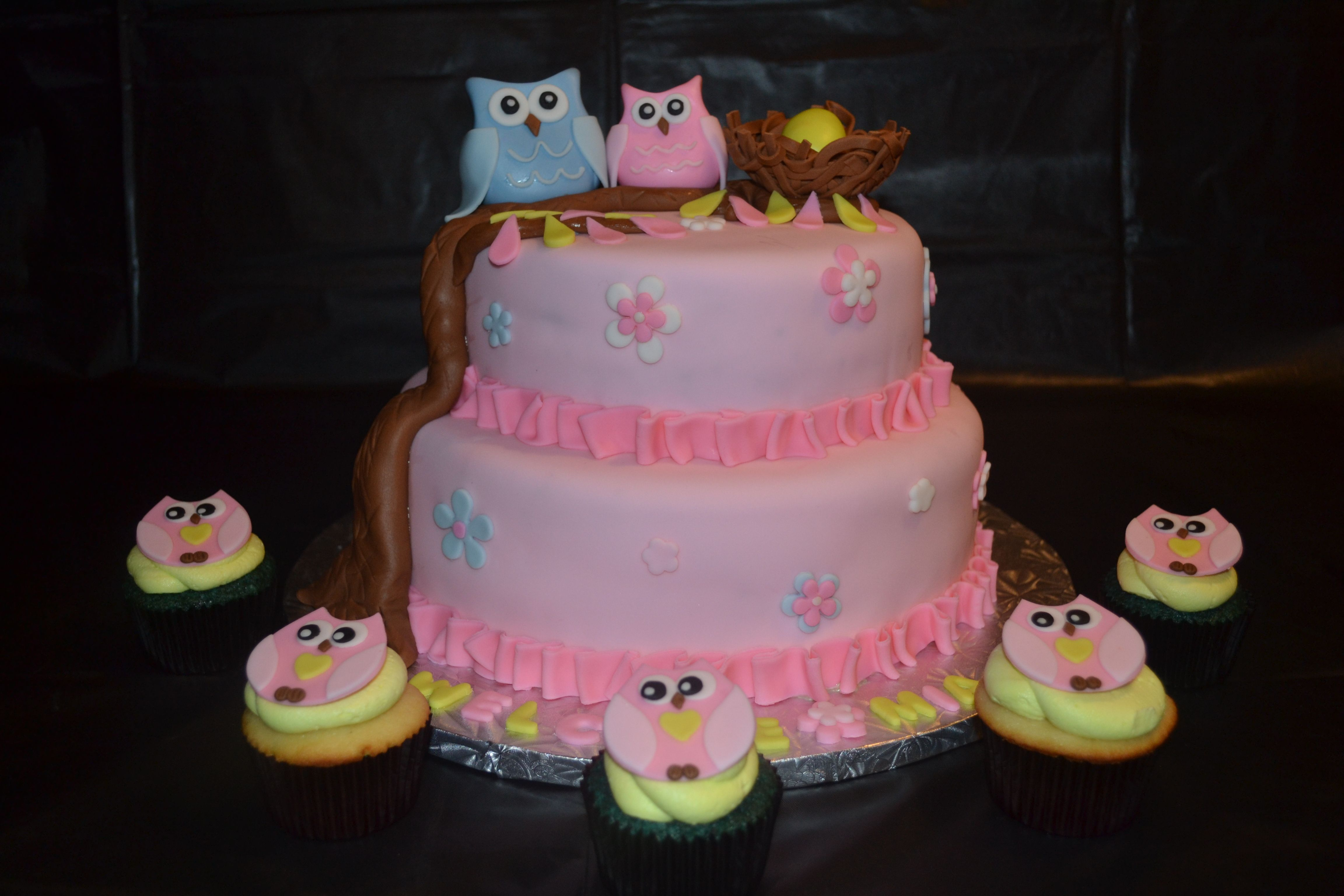 owl baby shower theme owl baby shower pinterest