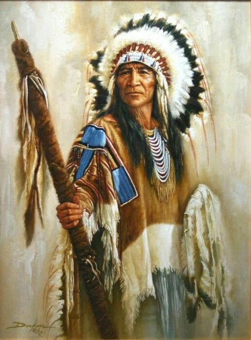 indian americans The american indians were the first settlers of the american continent listed are the 2010 top 25 native american indian tribes.
