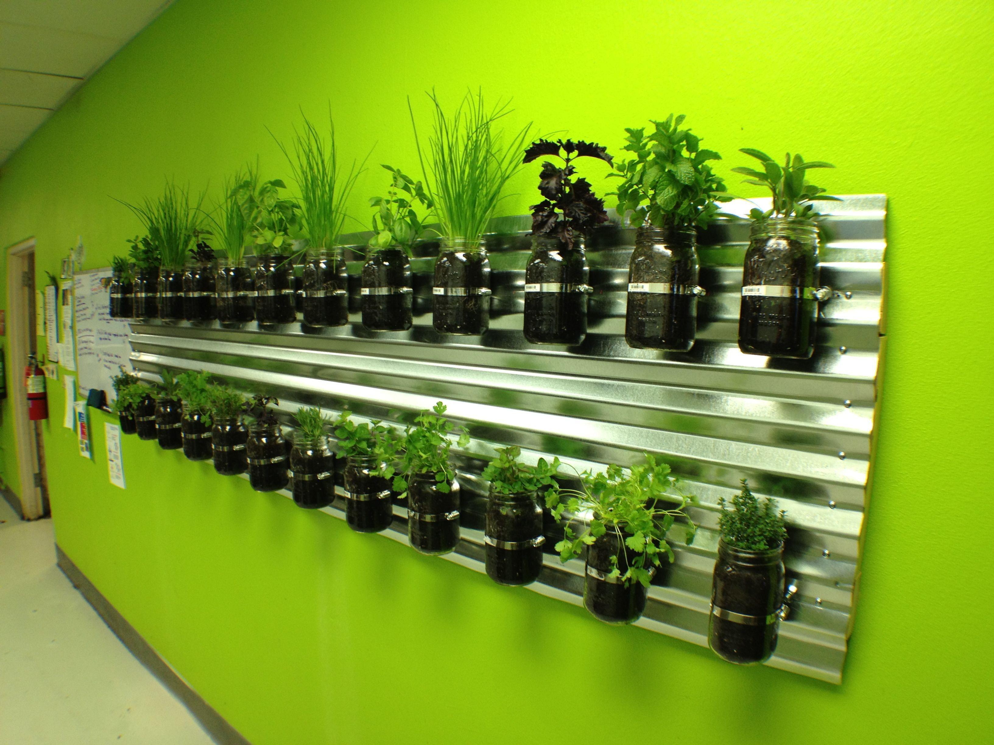 Herb Garden In Kitchen Similiar Kitchen Herb Garden Keywords
