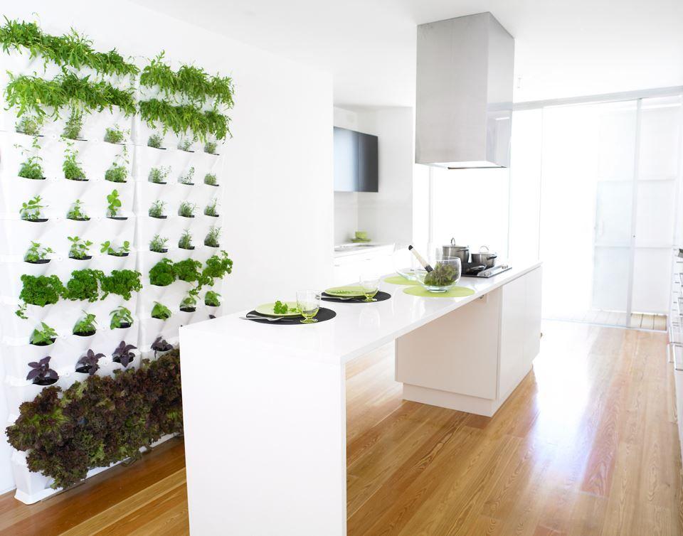 Indoor Vertical Herb Garden Playground Home Pinterest