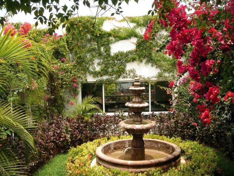 Jardines Mexicanos Related Keywords & Suggestions  Jardines Mexicanos