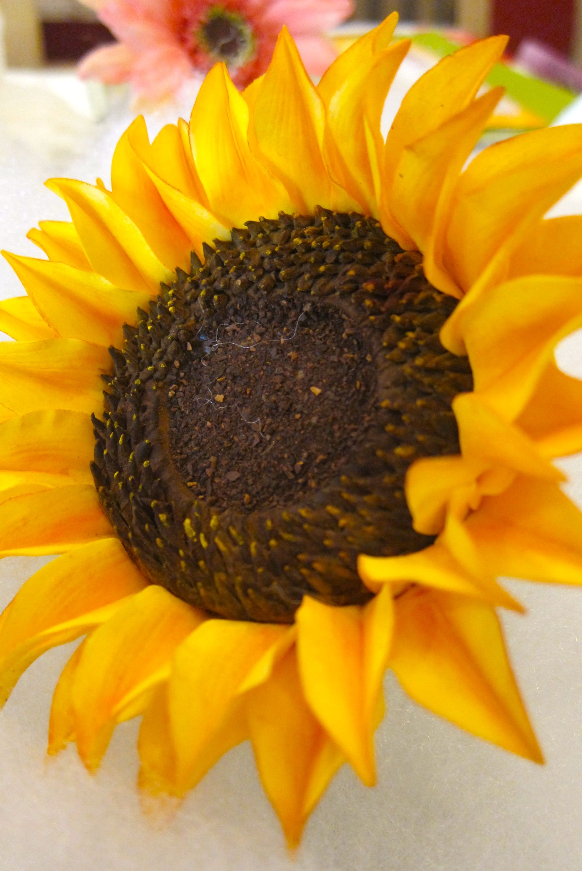 sunflower gumpaste
