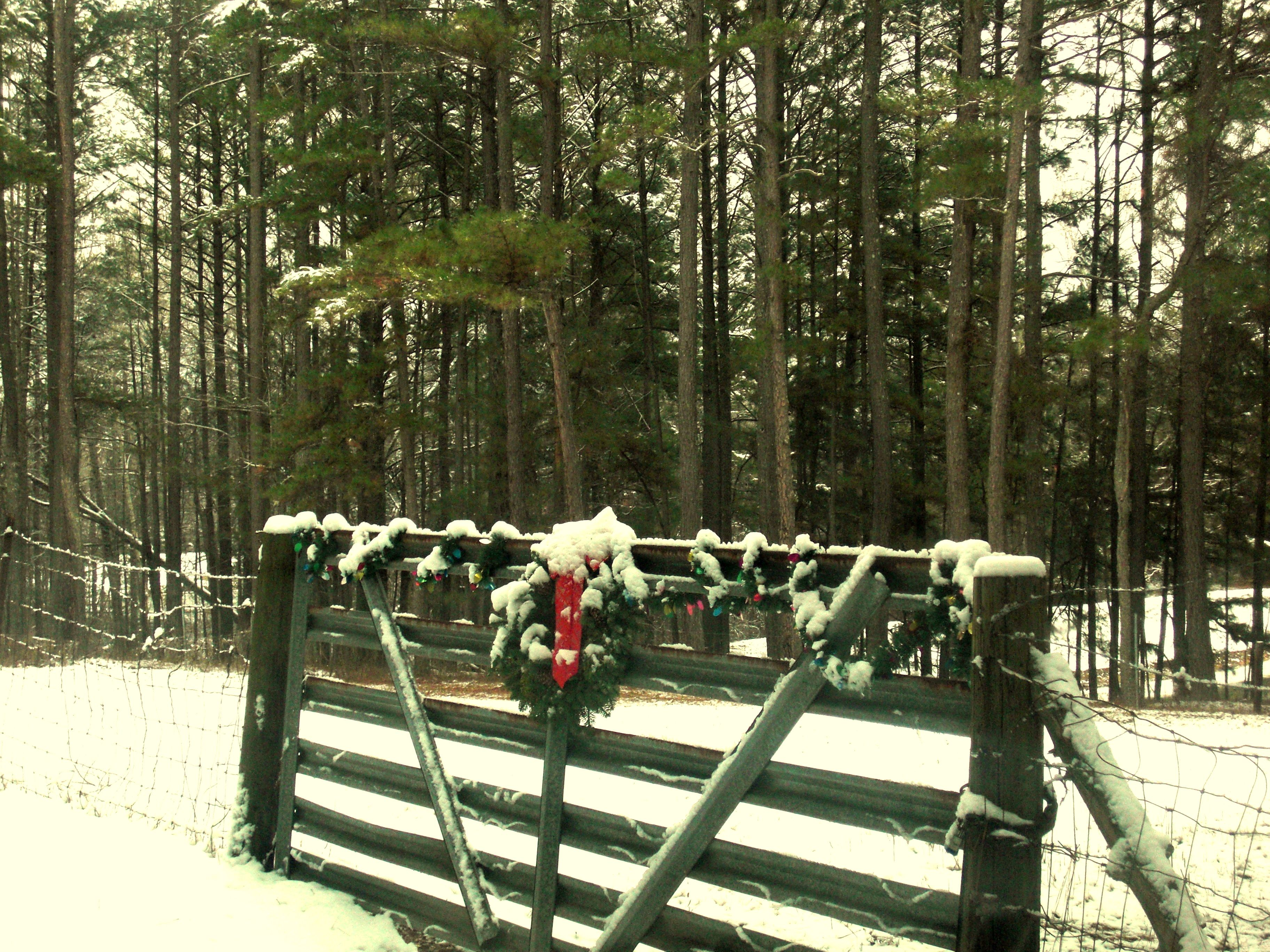 Christmas on the farm christmas pinterest