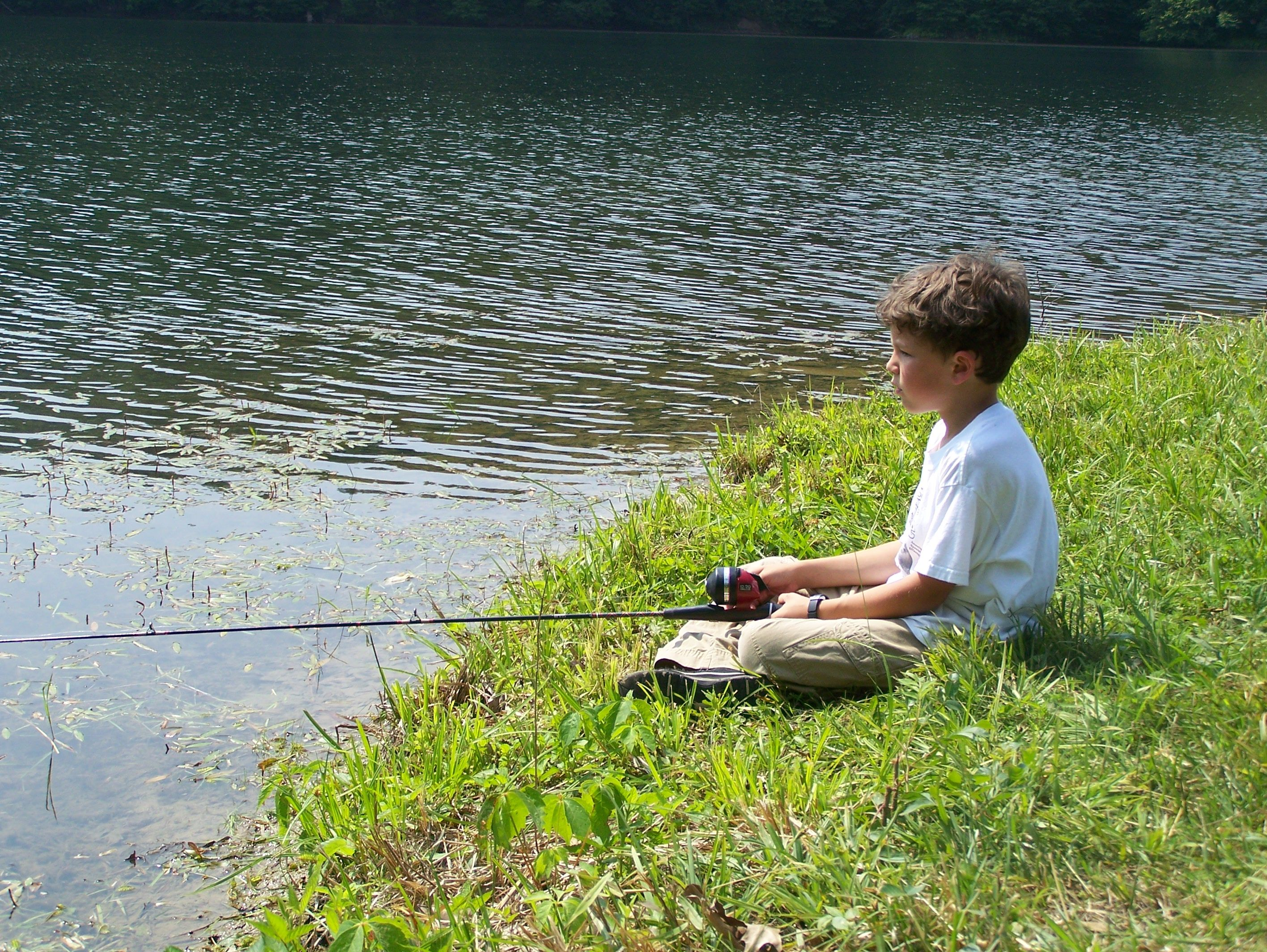 fishing in a pond sum sum summer time pinterest