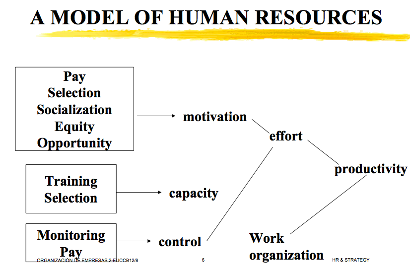 human resources dissertation topics