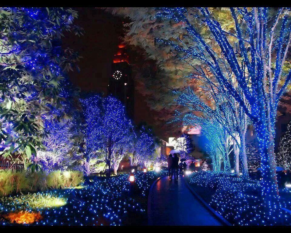 Christmas In Tokyo Japan Beautiful Places Pinterest