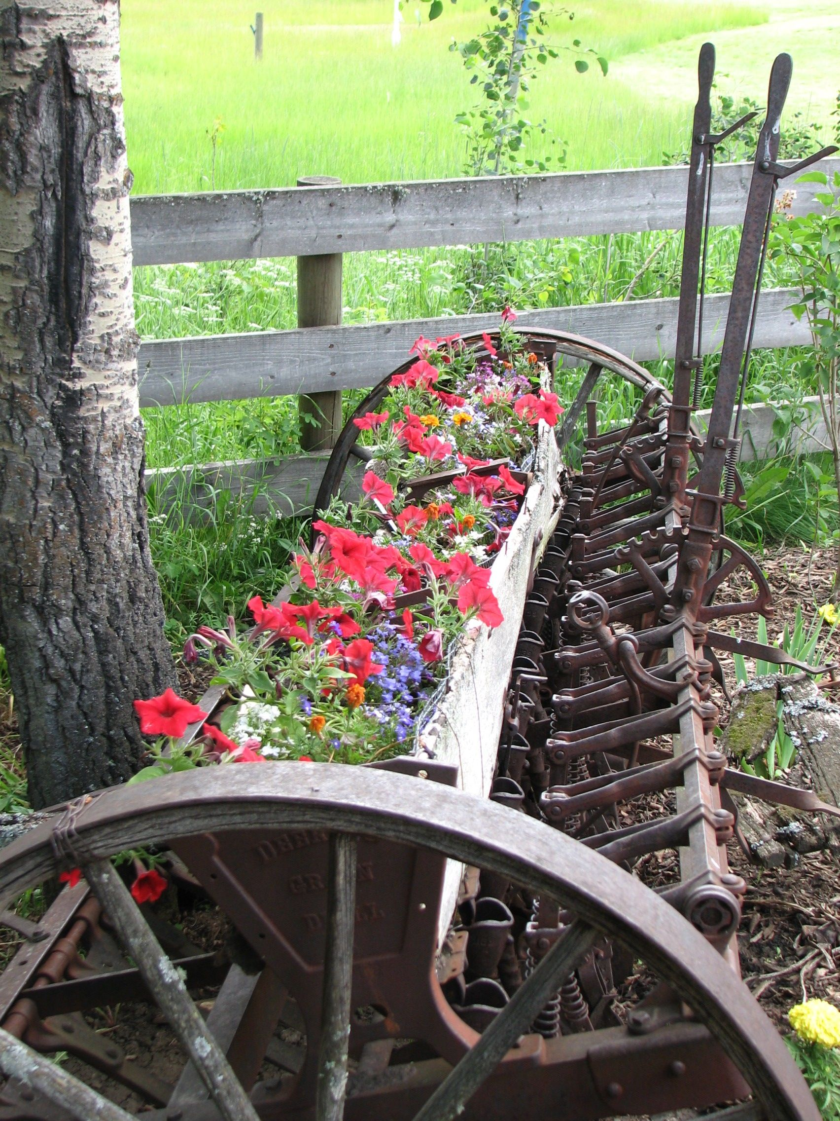 Rustic farm equipment with flowers whimsical garden for Outdoor garden equipment