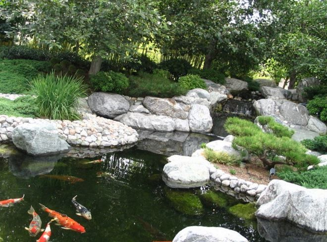 Plastic Backyard Ponds and Waterfalls