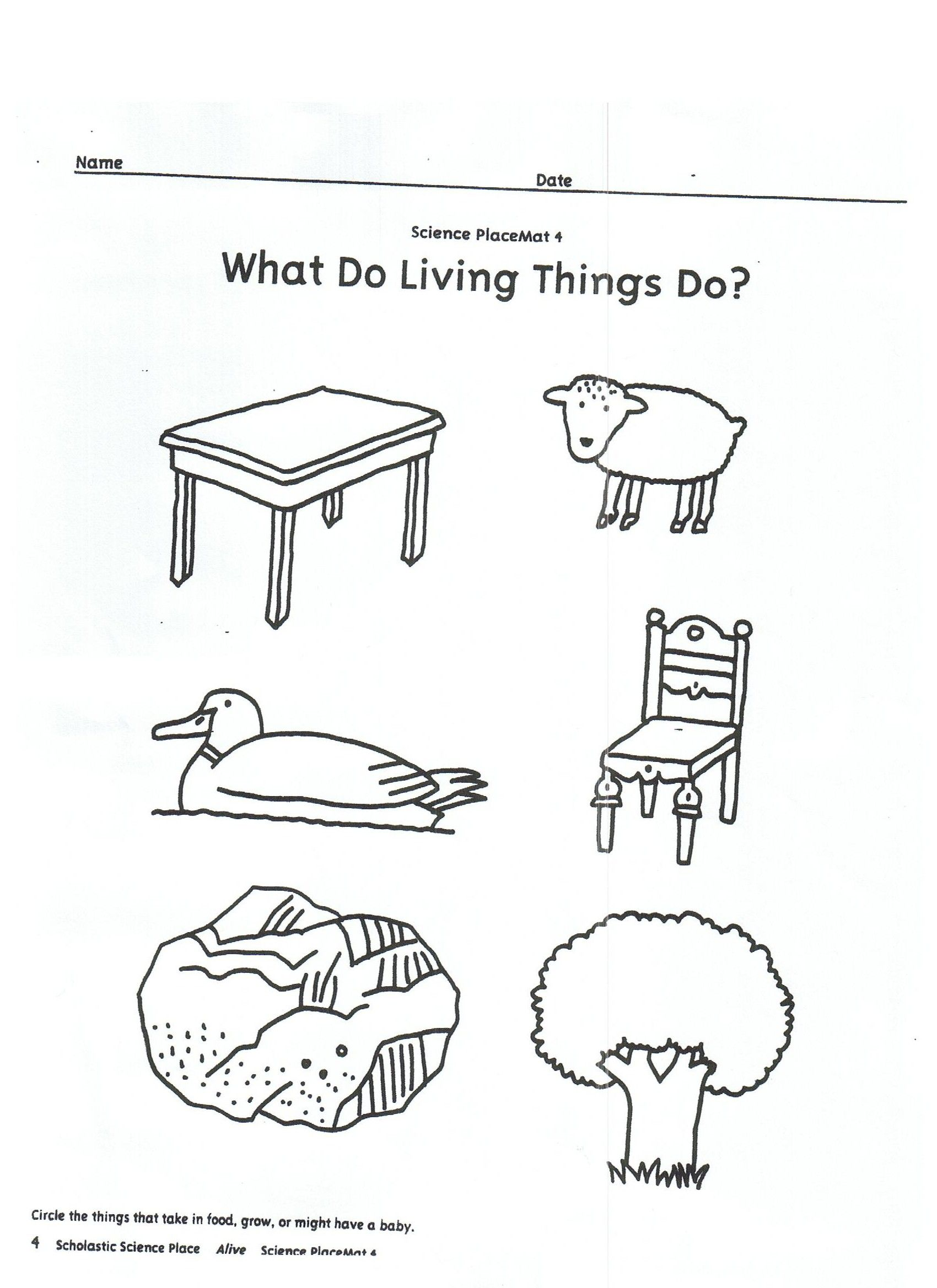 Kindergarten Worksheet Kindergarten Worksheets Living And