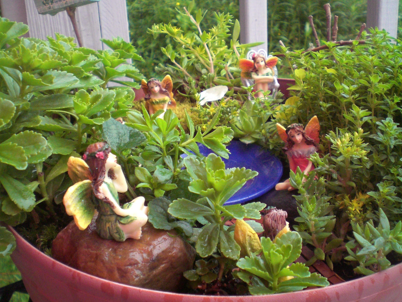 Planter Fairy Garden Fairy Gardens Pinterest