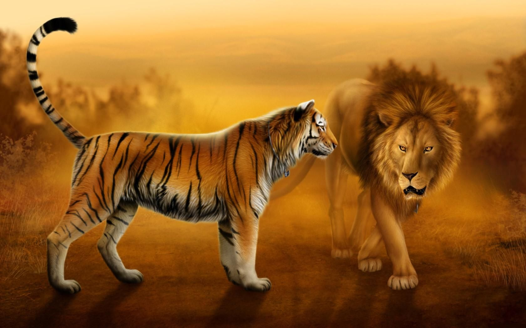 Big Cats - Learn Cool Facts about Pictures of lions tigers and cheetahs