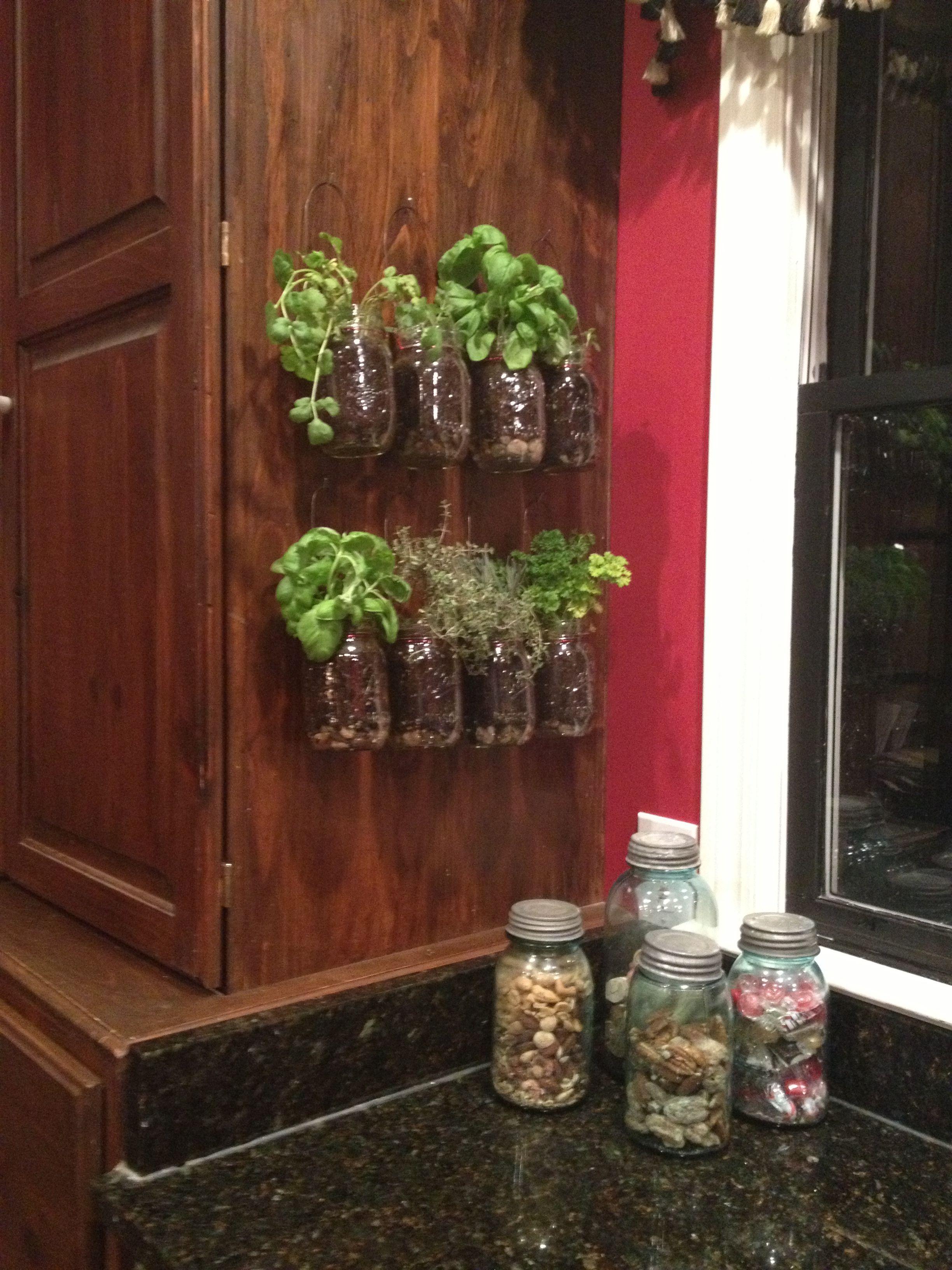 Kitchen herb garden | Garden Stuff | Pinterest