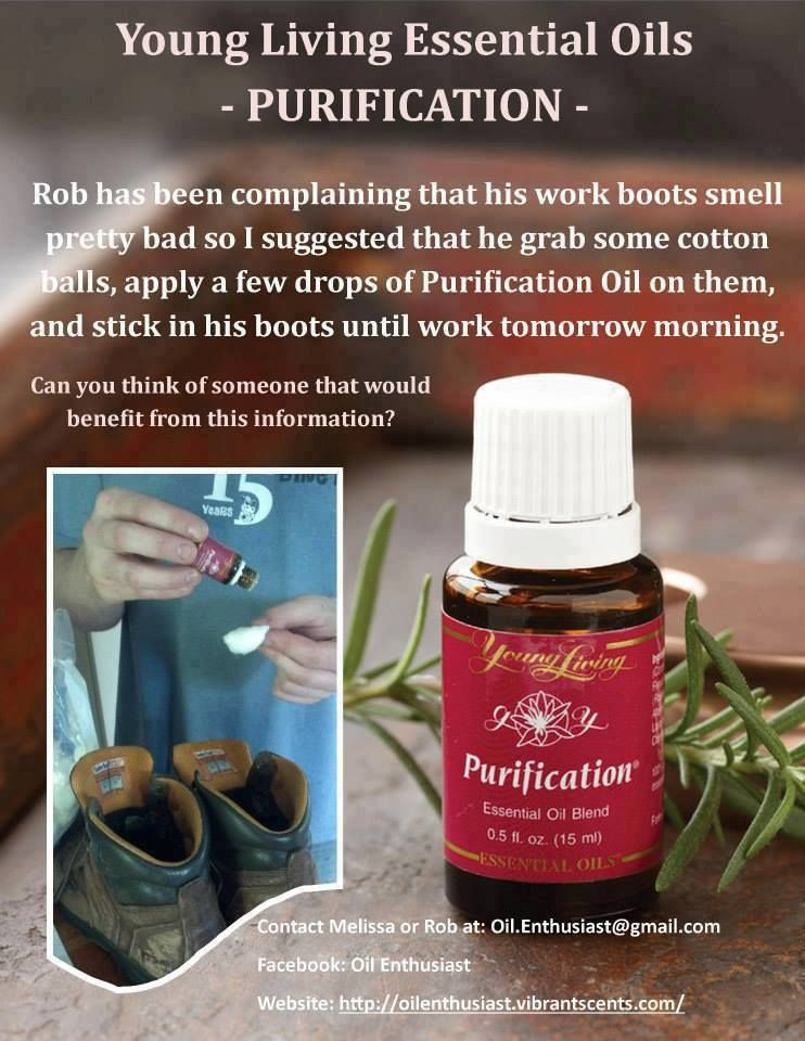 Purification Young Living Essential Oils Life Pinterest