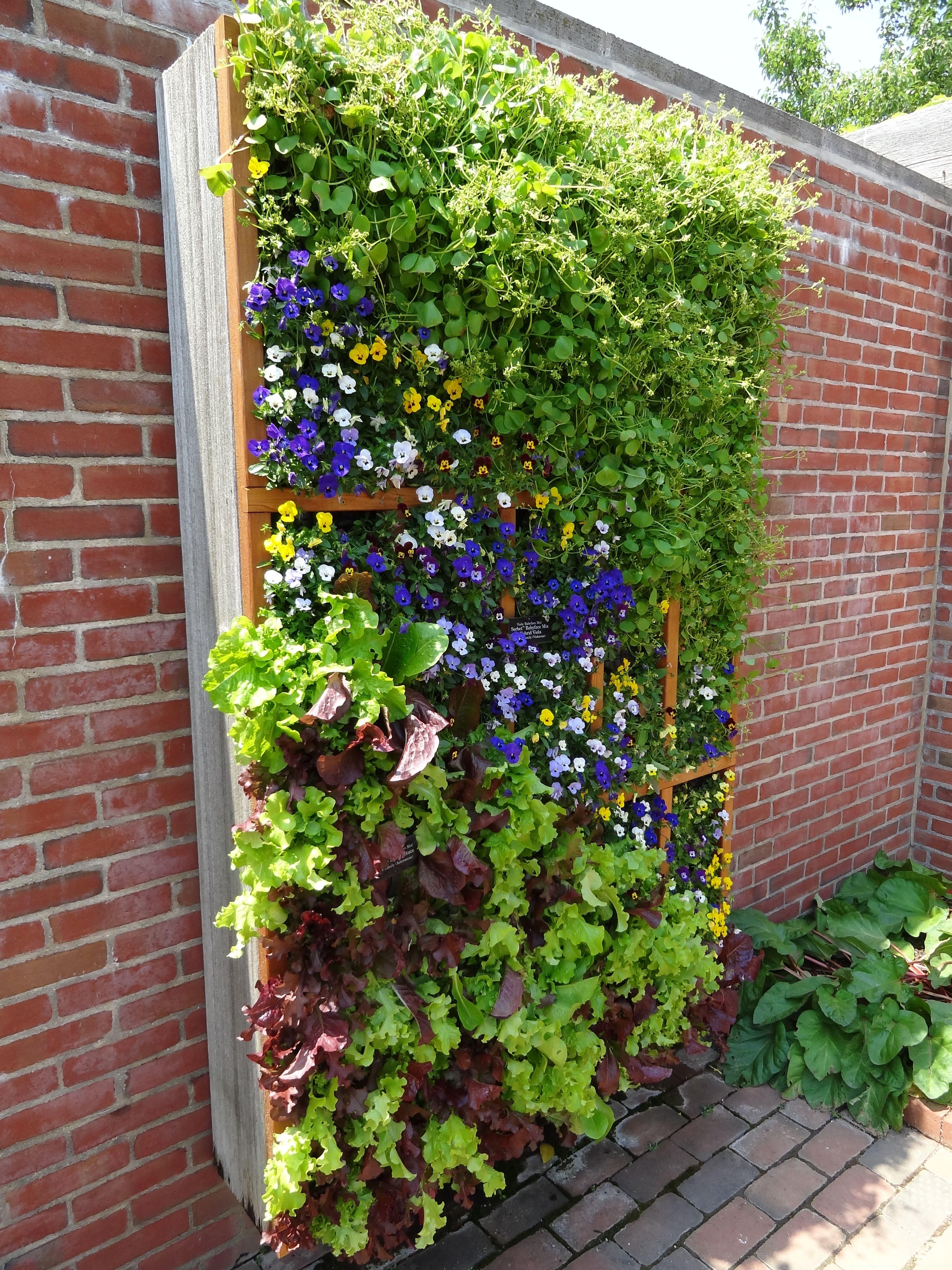 Vertical Herb Garden Plant This Pinterest