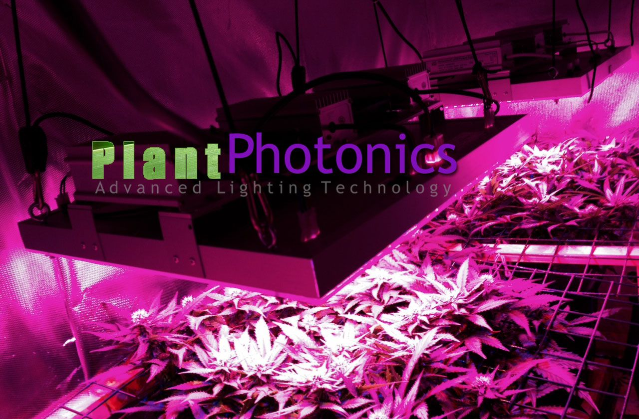 by plant photonics on best high power led grow lights on the mark. Black Bedroom Furniture Sets. Home Design Ideas