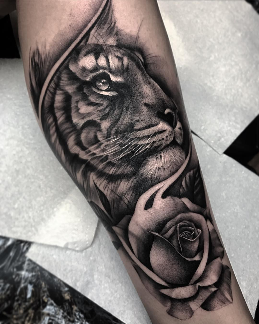 Black and grey tiger tattoo designs