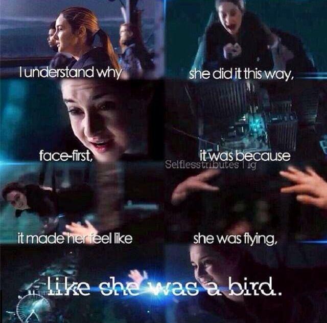 ShareMyra Divergent