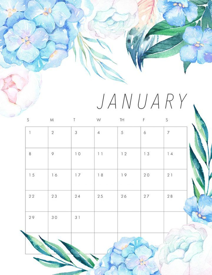 Free Printable 2017 Floral Calendar | January, Planners and Bullet