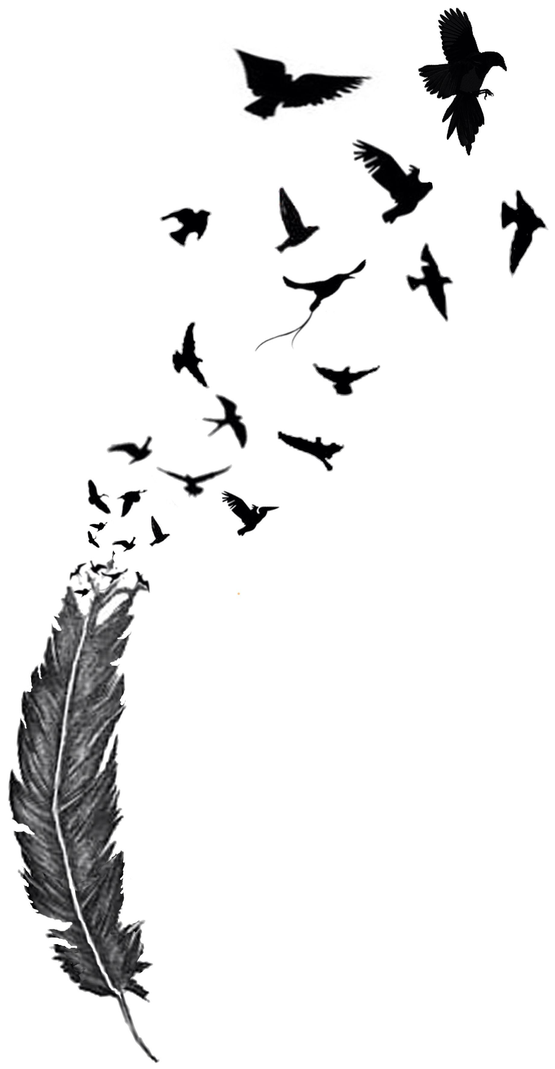 Тату перо с птицами эскизы