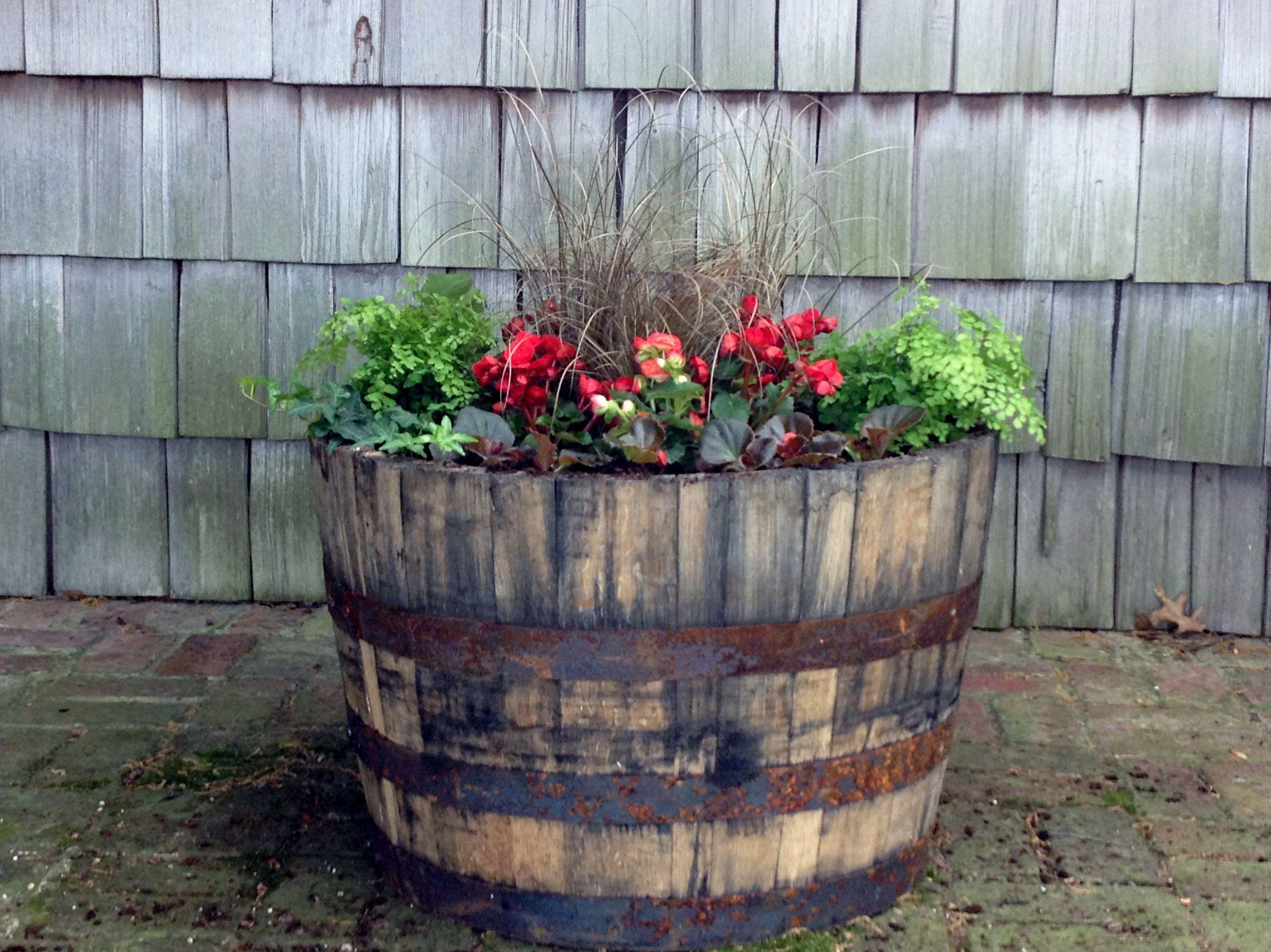 Whiskey barrel planter my planters yard ideas pinterest for Yard planter ideas