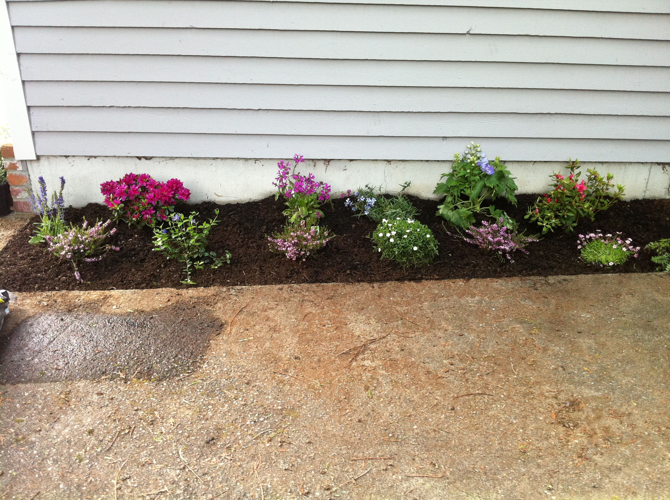 Flower bed 1 flower bed ideas pinterest for Flower bed arrangements
