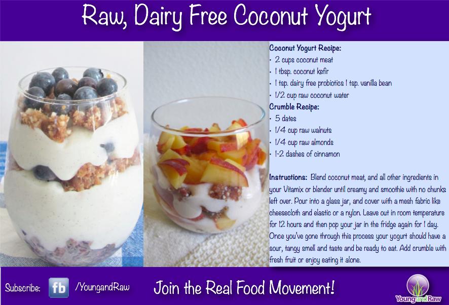 DIY Dairy-Free Coconut Yogurt Recipe — Dishmaps