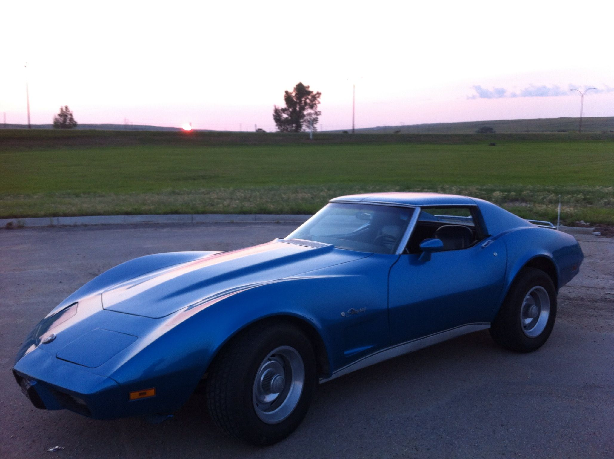 1975 corvette stingray corvette 39 s pinterest. Cars Review. Best American Auto & Cars Review