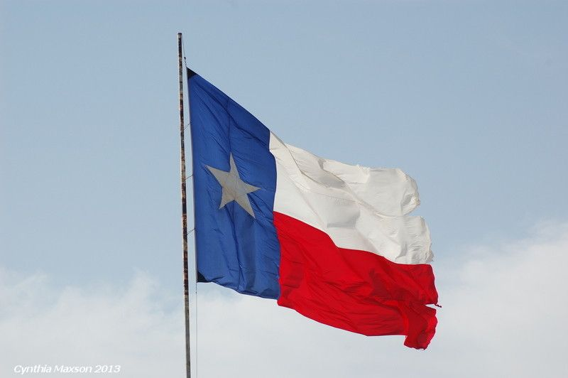 texas flag day