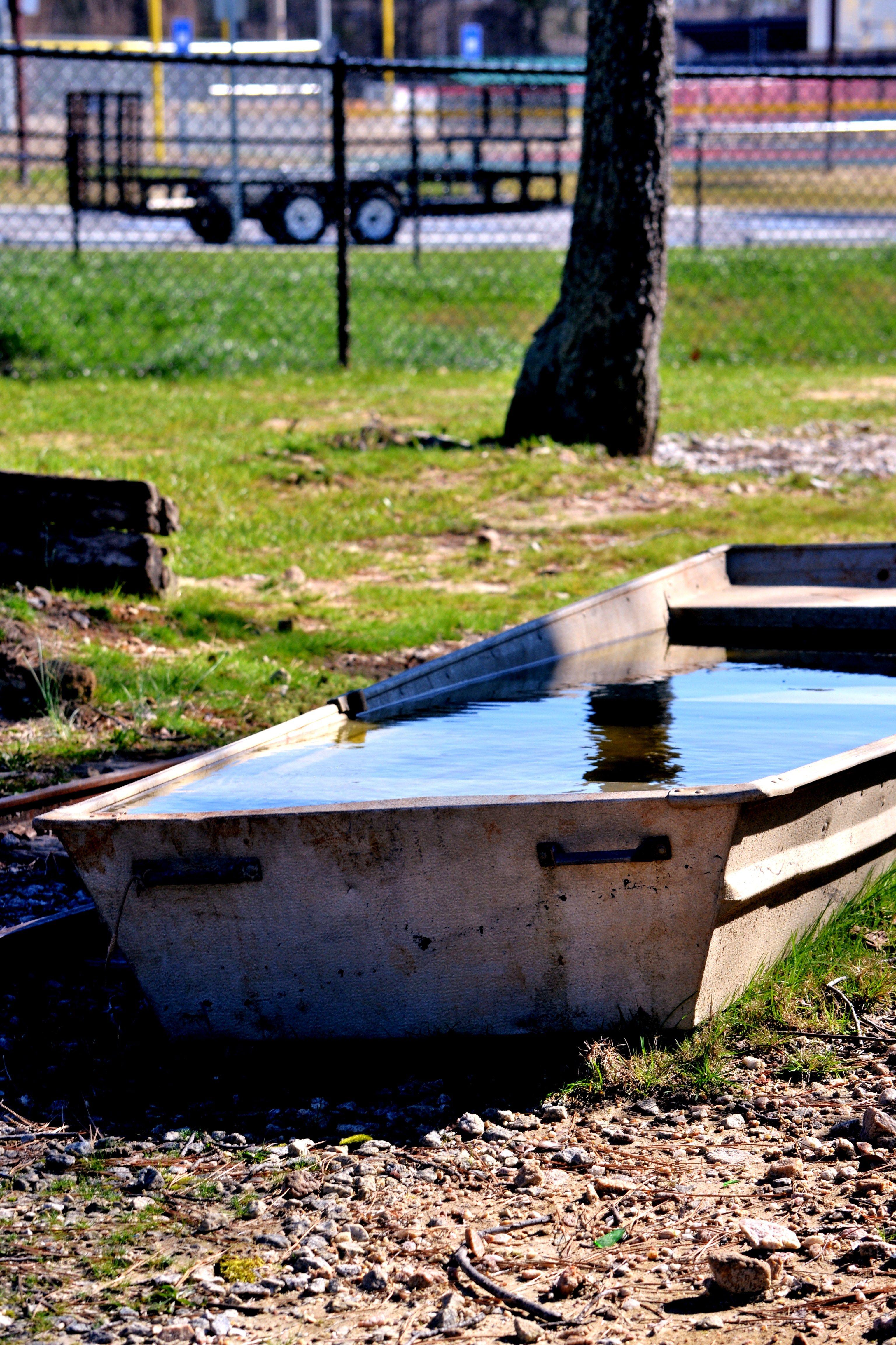 Backyard Duck Pond Ideas : Duck Pond  Nancys Photography  Pinterest