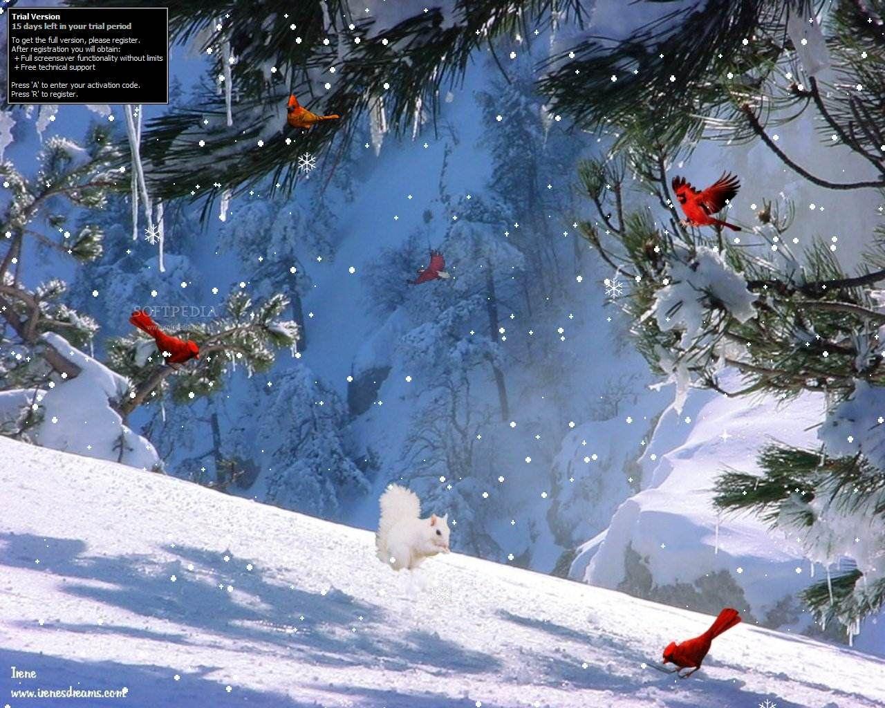 google winter screensavers and wallpaper - photo #21