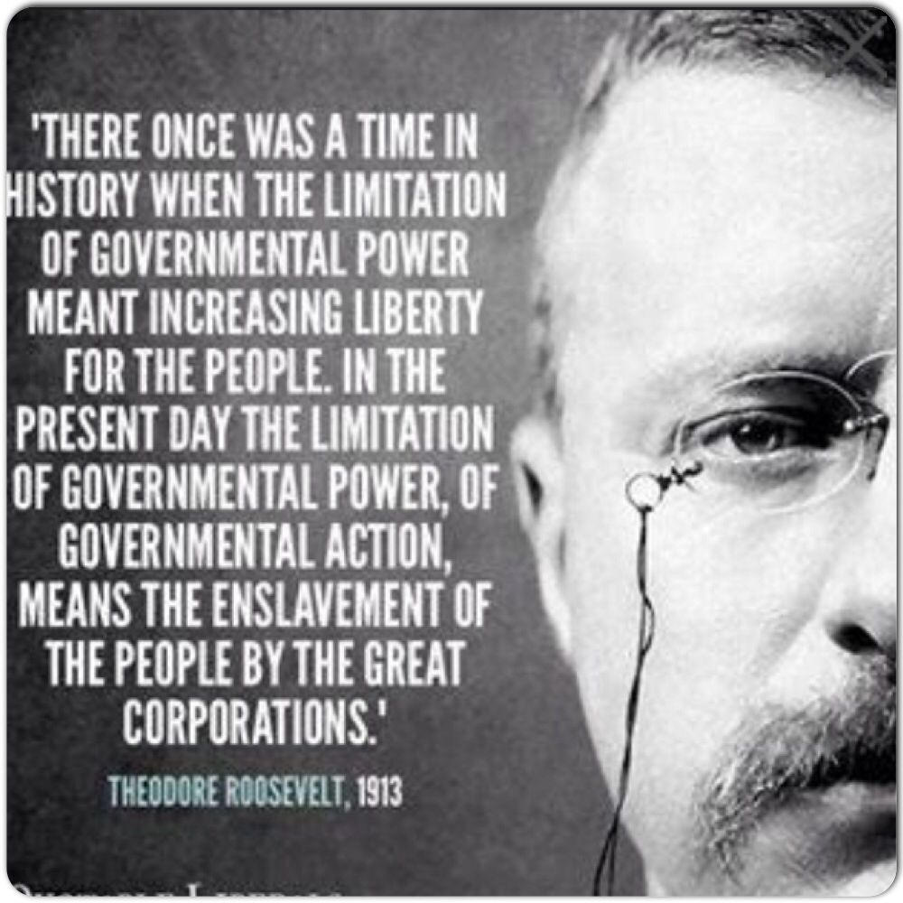 Theodore Roosevelt Quote  Political Quotes  Pinterest