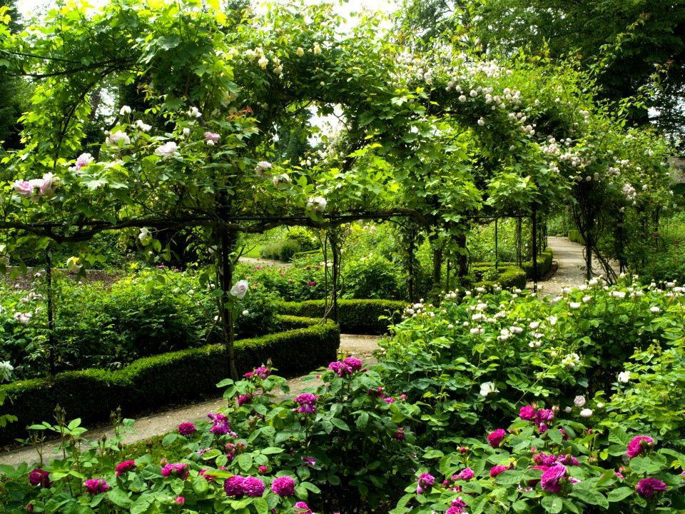 English Rose Garden on a large scale Rose Garden Pinterest