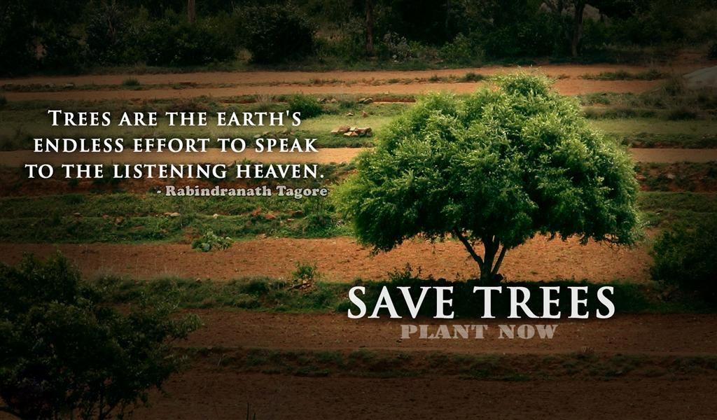 Essay on save- English - Hindi Translation and