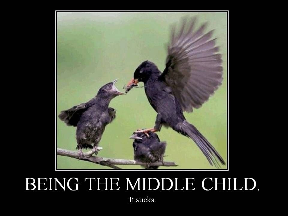 """being the middle child Being a middle child meant that sometimes i was just a head count being a middle child meant that sometimes i was the """"center"""" of attention but more often than not, being a middle child meant that i was defined by being neither the beginning nor the end."""