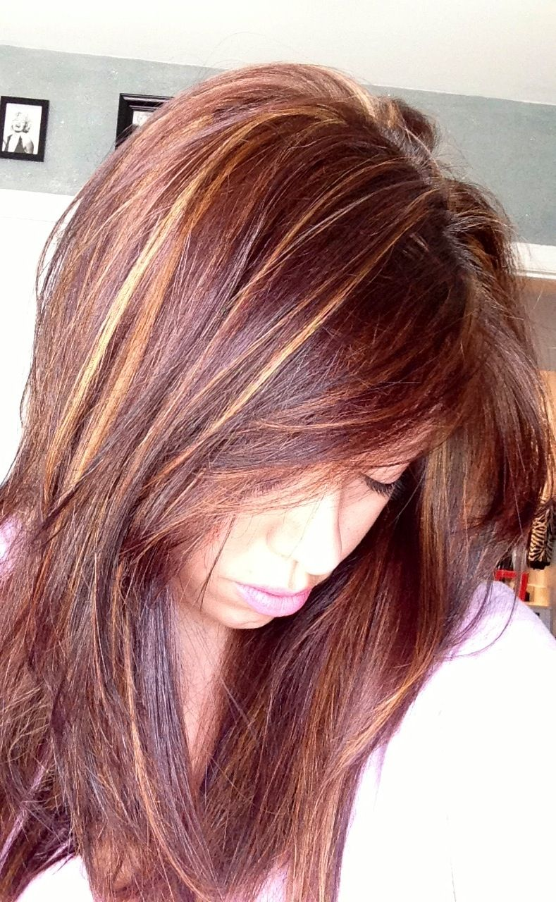 blonde highlights with muddy red brown hair color pictures