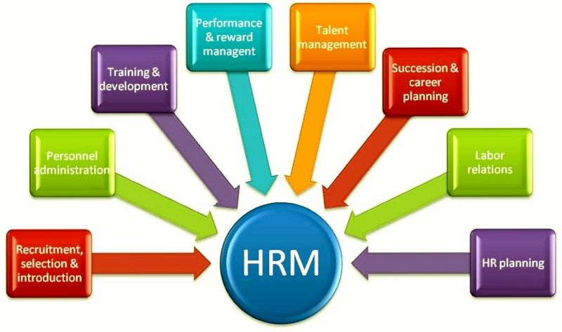 human resource management term papers Writing management papers with us is the right way towards management term paper, management research an introduction to human resource management.