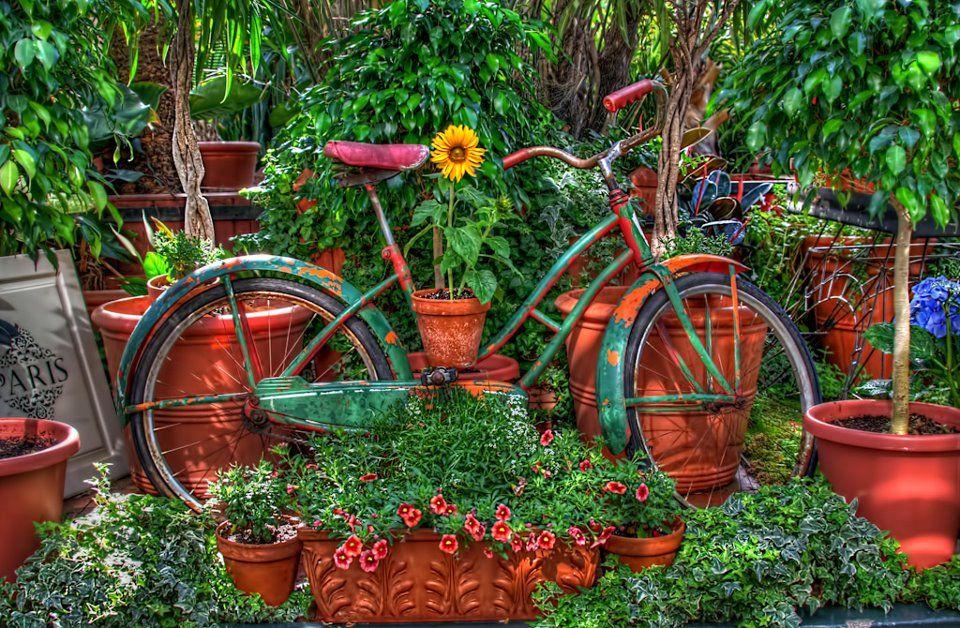 enfeite jardim bicicleta:Bicicleta velha virá enfeite de jardim