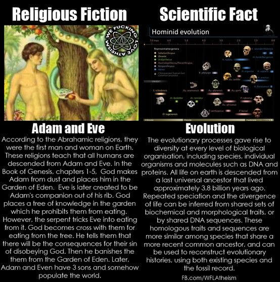 a comparison of religion versus science on the topic of creation How much do people's religious beliefs influence their views about science topics there was debate for centuries about the origins of the universe and how to.