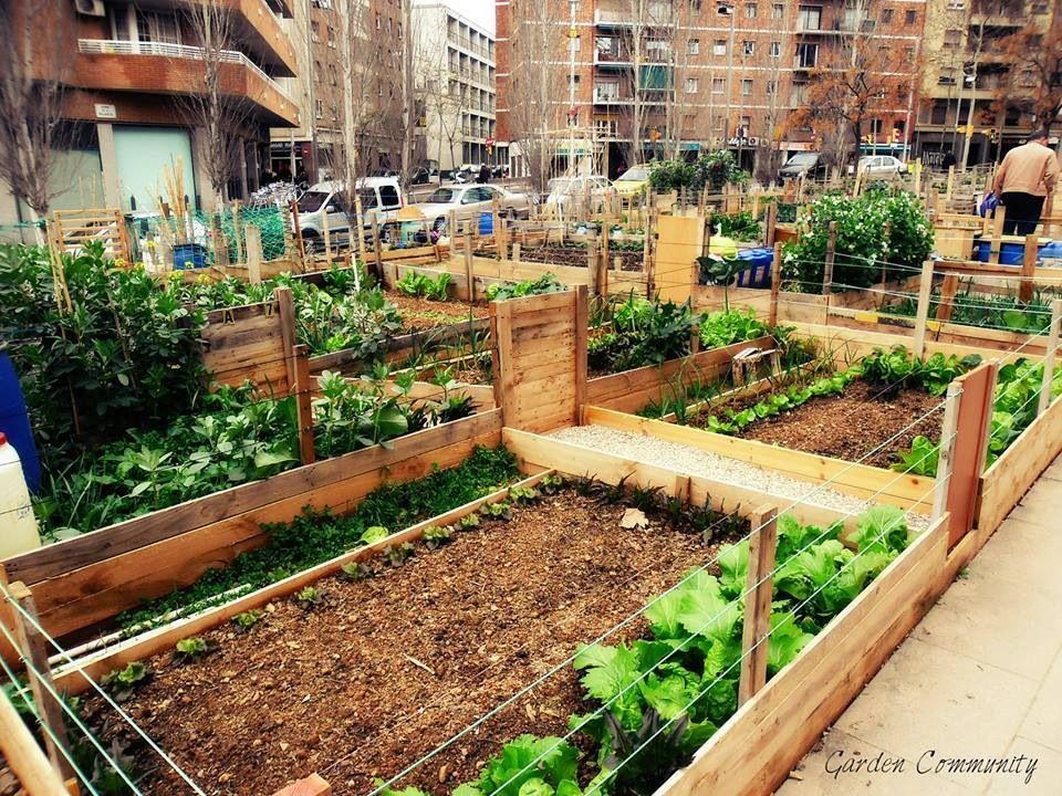 Square foot gardening roof garden ideas pinterest for Garden designs for small square gardens