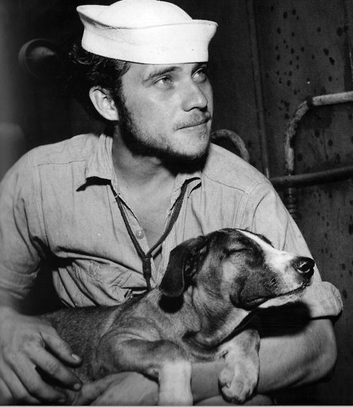 sailor and dog