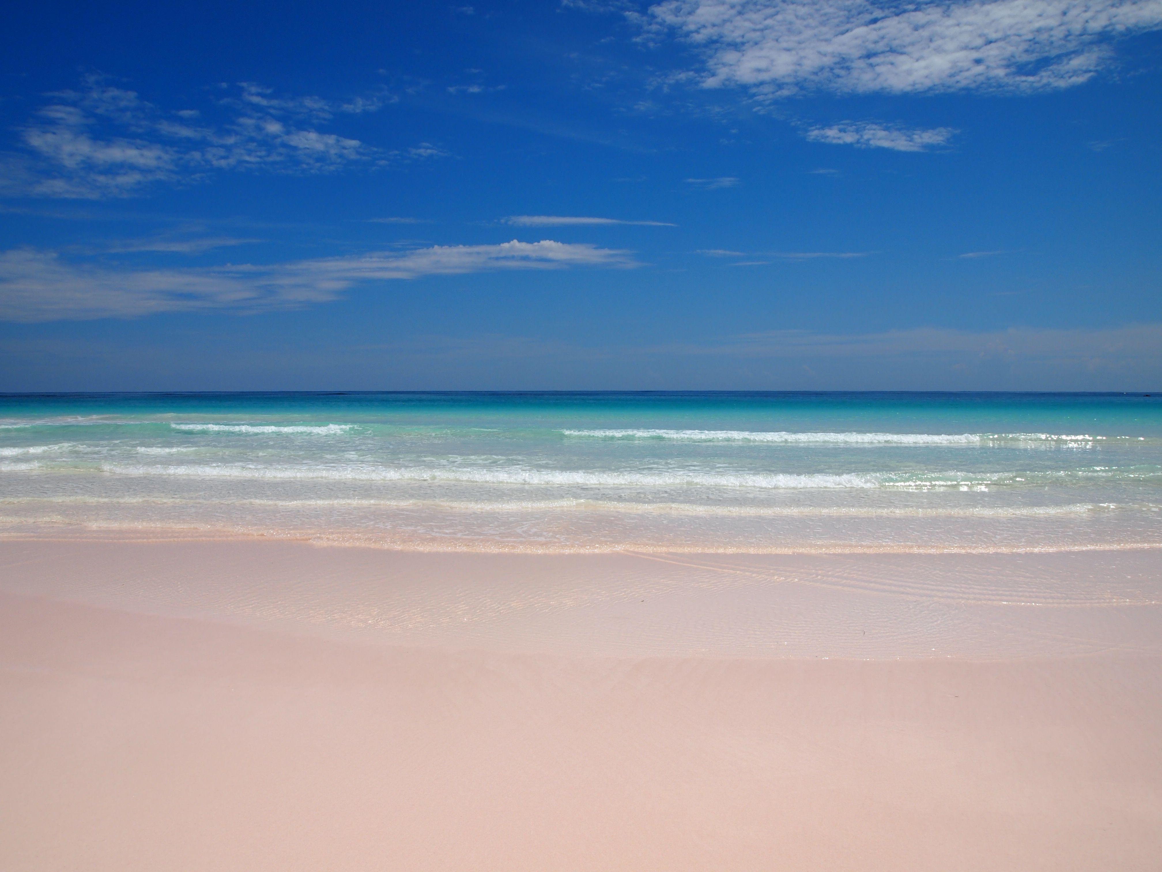 Pink sands beach harbour island beach love pinterest for Pink sands beach in harbour islands