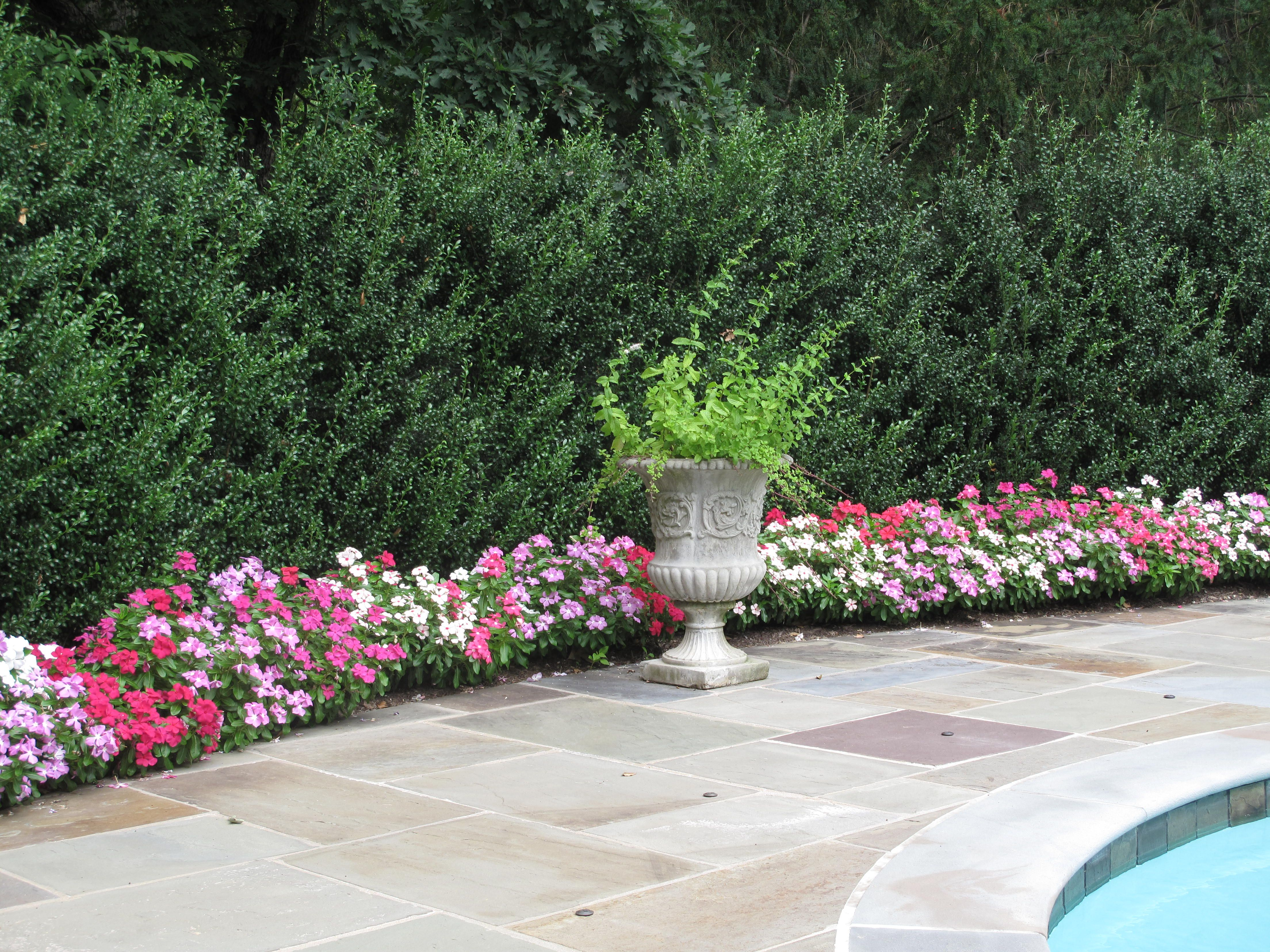 Pool Patio And Flower Bed Home Sweet Home Pinterest 400 x 300