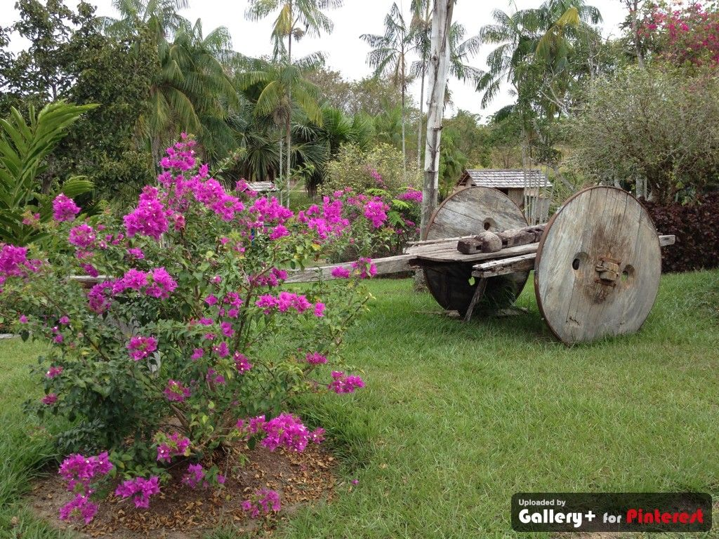 jardim vertical lapa:Jardim