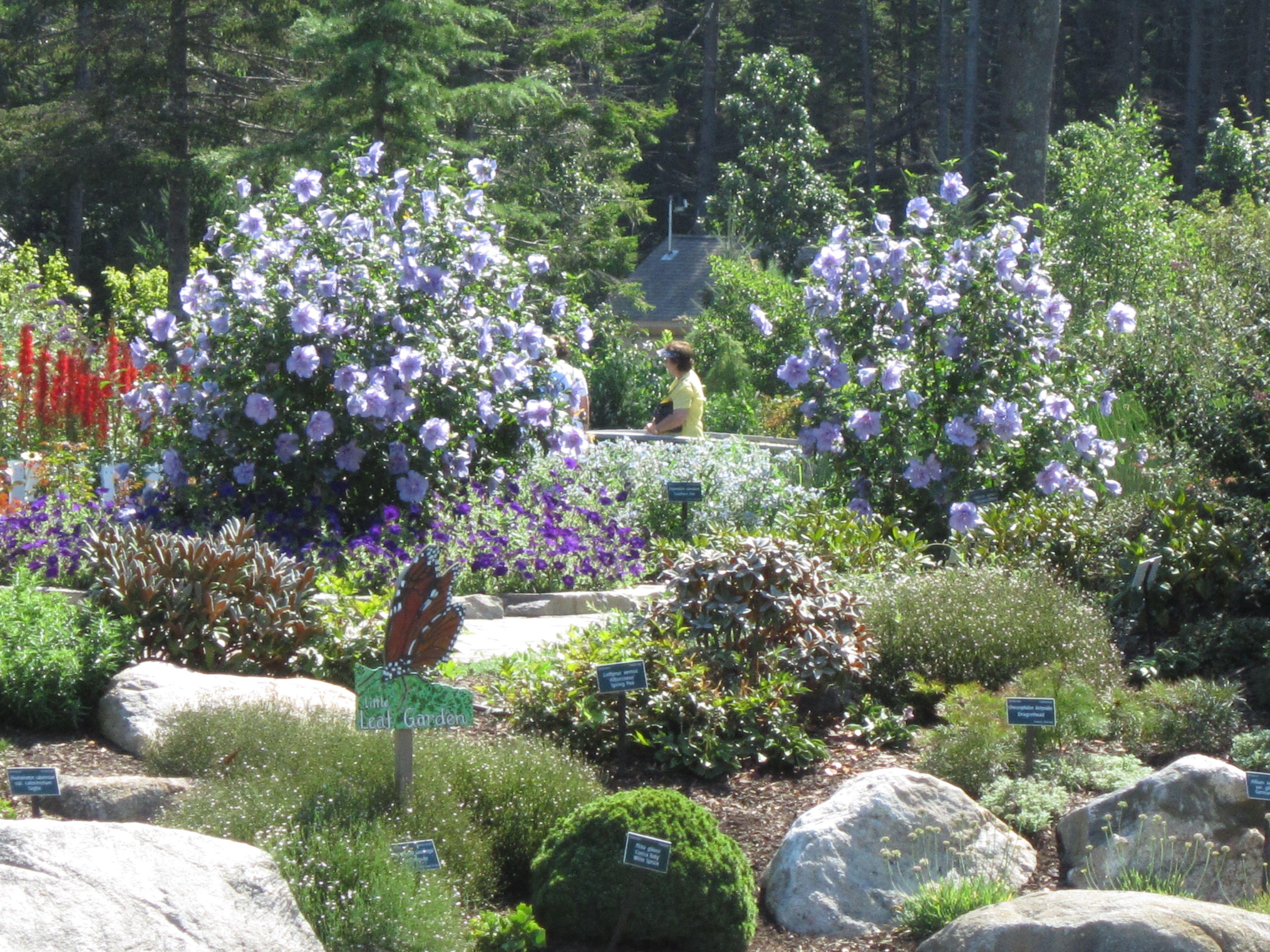 English Gardens Landscaping Sha excelsiororg